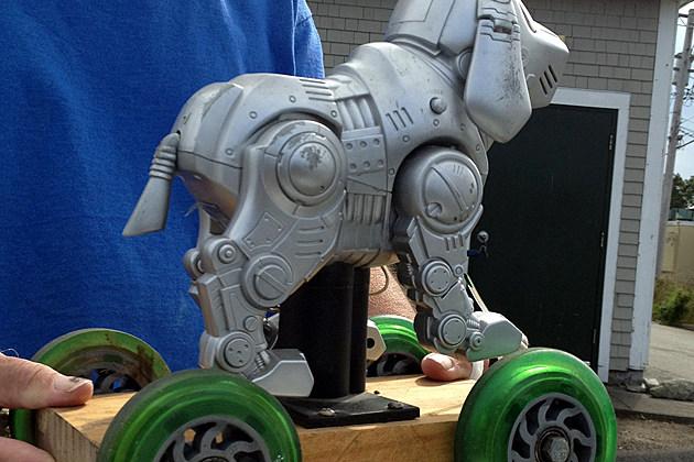 Robo Dog