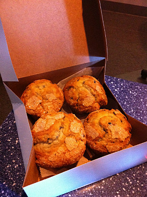 Tek Muffins