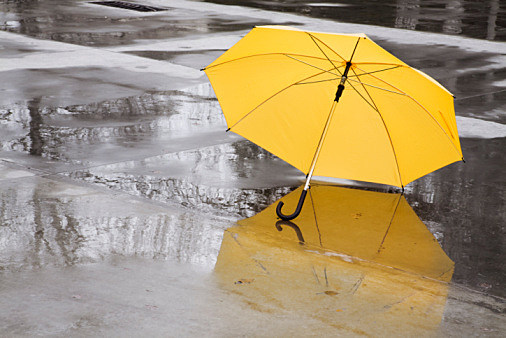 yellow umbrella