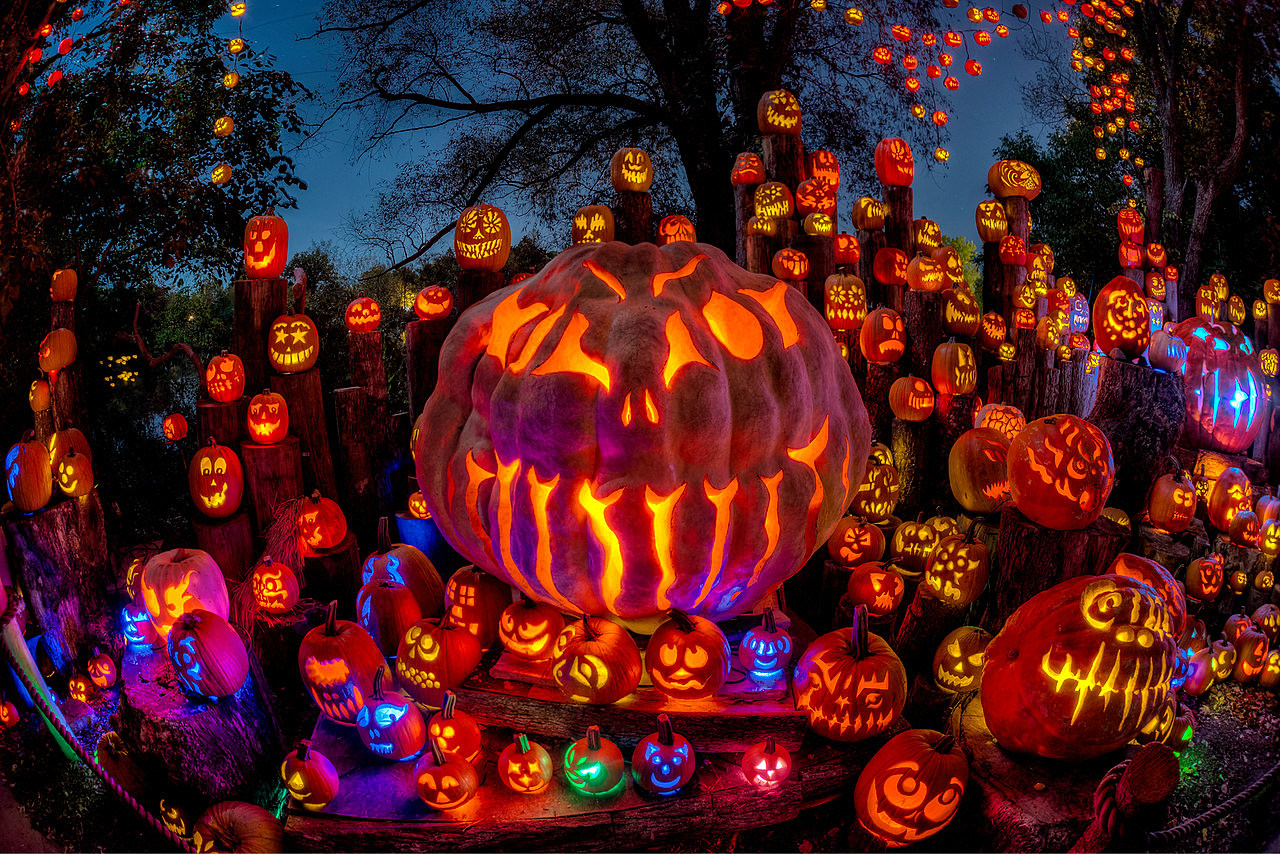 jack-o-lantern spectacular returns to roger williams park zoo