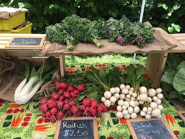 Dartmouth-Farmers-Market