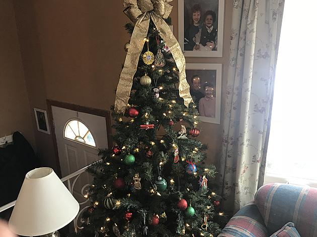 when youre all out of christmas spirit its easy to take down with minimal mess and pine needles - When To Take Down Christmas Tree